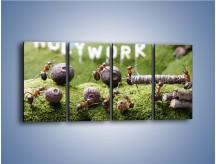 Obraz na płótnie – Ciężka praca mrówek – czteroczęściowy Z308W1