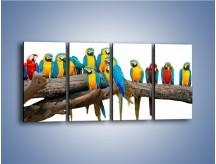 Obraz na płótnie – Kolorowe stado papug – czteroczęściowy Z326W1