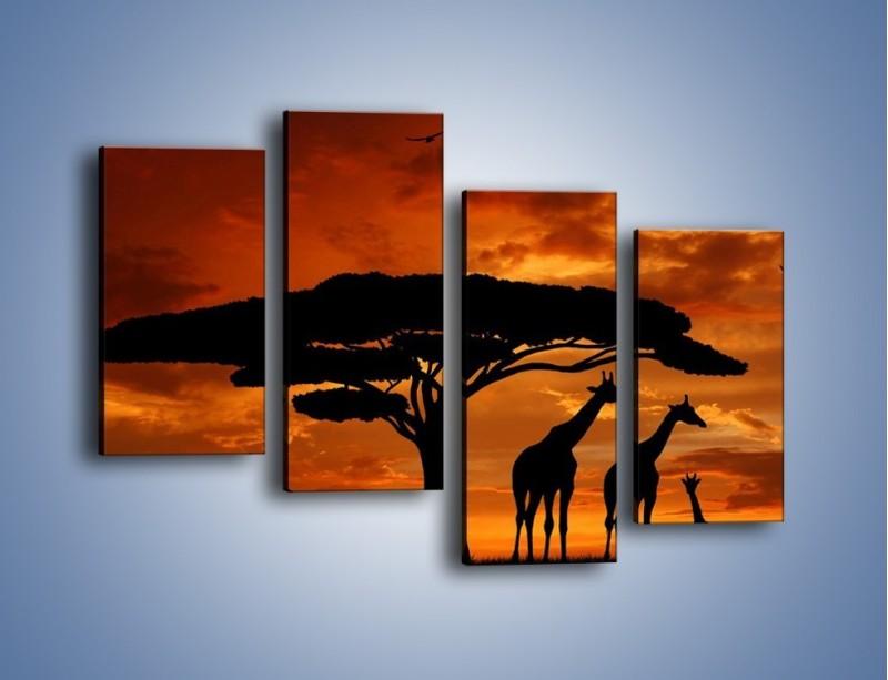 Obraz na płótnie – Żyrafy wieczorową porą – czteroczęściowy GR266W2