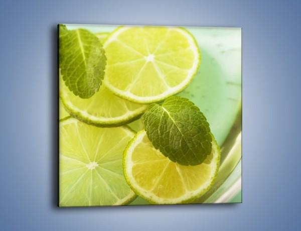 Obraz na płótnie – Lemoniada idealna na upały – jednoczęściowy kwadratowy JN252