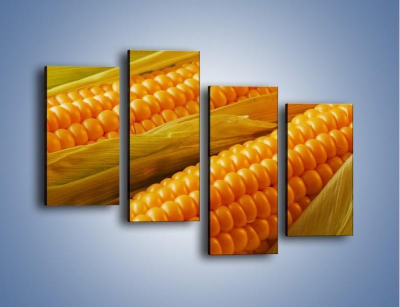 Obraz na płótnie – Kolby dojrzałych kukurydz – czteroczęściowy JN046W2