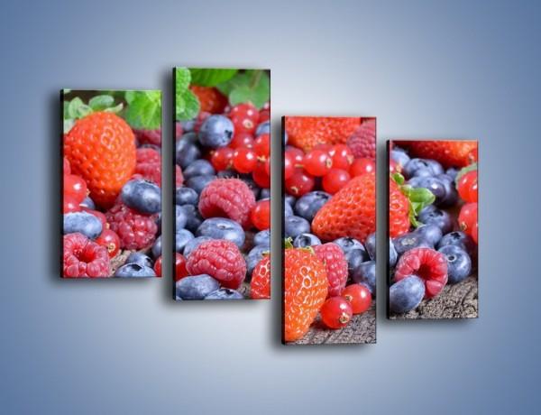 Obraz na płótnie – Owoce z działki – czteroczęściowy JN422W2