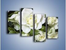 Obraz na płótnie – Białe róże na stole – czteroczęściowy K131W2