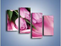 Obraz na płótnie – Atłas wśród tulipanów – czteroczęściowy K152W2