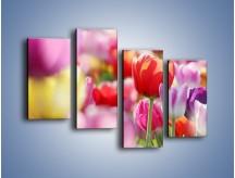 Obraz na płótnie – Boso przez tulipany – czteroczęściowy K344W2