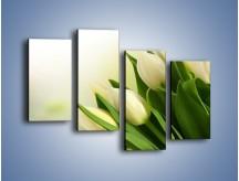 Obraz na płótnie – Białe tulipany na zgodę – czteroczęściowy K400W2