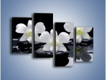 Obraz na płótnie – Biel w kwiecie nocą – czteroczęściowy K512W2