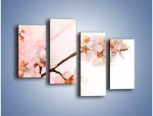 Obraz na płótnie – Blask kwiatów jabłoni – czteroczęściowy K569W2