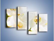 Obraz na płótnie – Białe storczyki blisko siebie – czteroczęściowy K811W2