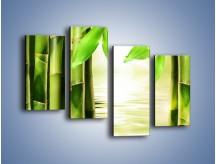 Obraz na płótnie – Bambusowe liście i łodygi – czteroczęściowy KN027W2
