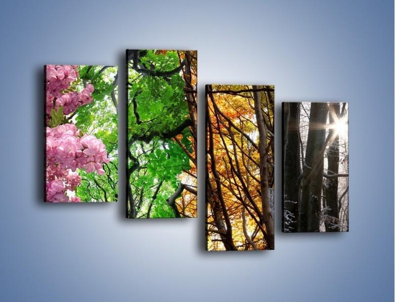 Obraz na płótnie – Drzewa w różnych kolorach – czteroczęściowy KN037W2