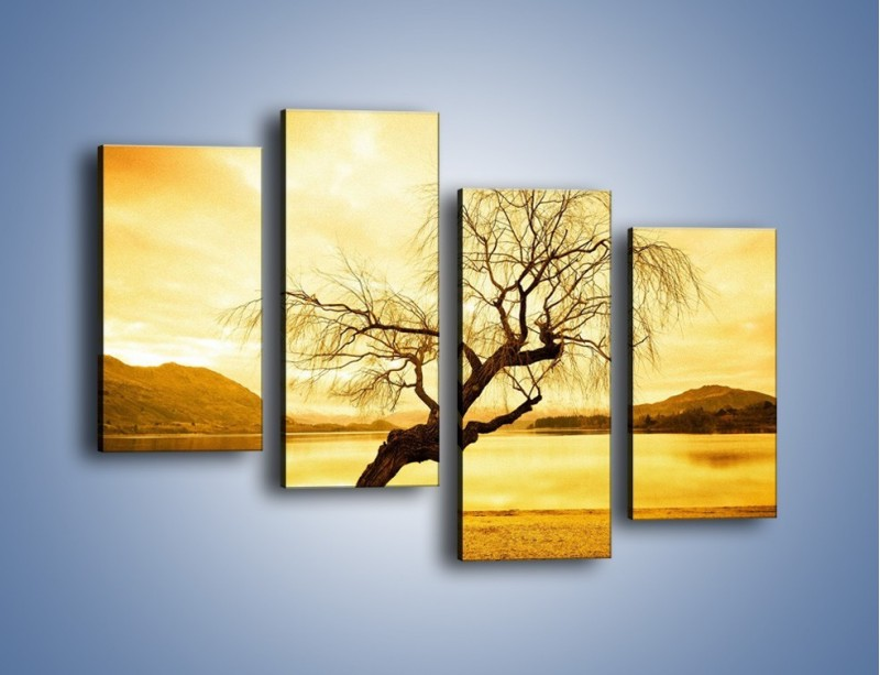 Obraz na płótnie – Pochylone drzewo w sepii – czteroczęściowy KN1033W2
