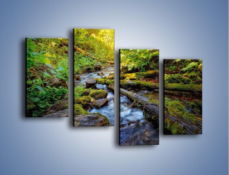 Obraz na płótnie – Drewno ścięte do wody – czteroczęściowy KN1059W2