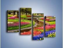 Obraz na płótnie – Aleje kolorowych tulipanów – czteroczęściowy KN1079W2