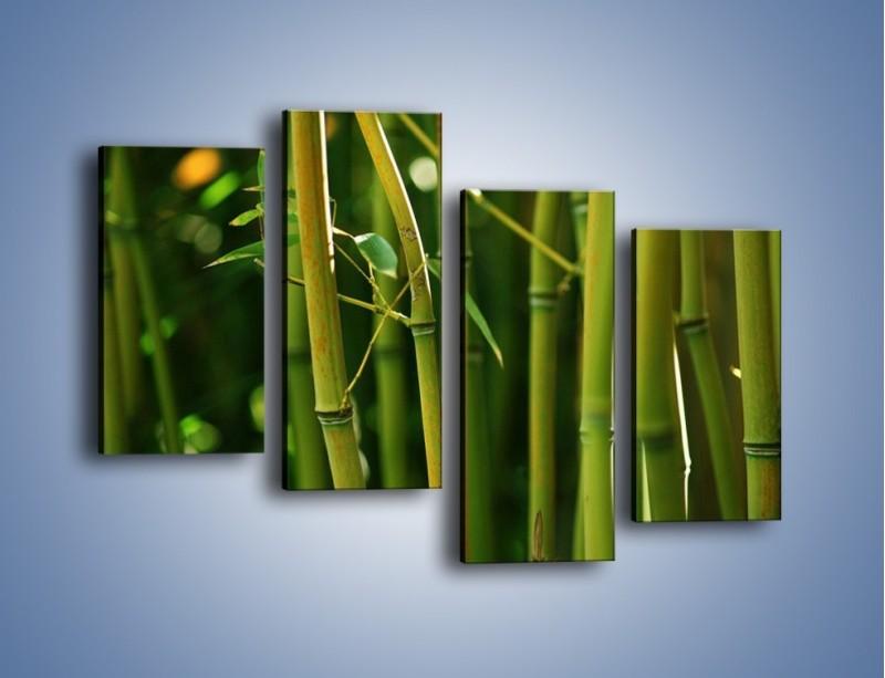 Obraz na płótnie – Bambusowe łodygi z bliska – czteroczęściowy KN118W2