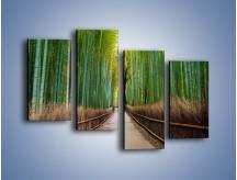 Obraz na płótnie – Bambusowy las – czteroczęściowy KN1187AW2