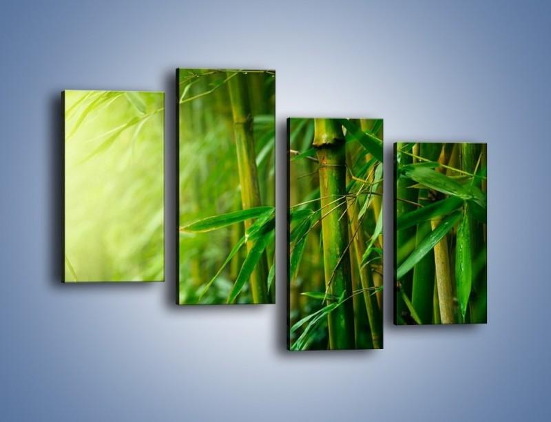 Obraz na płótnie – Bambus w roli głównej – czteroczęściowy KN1202AW2