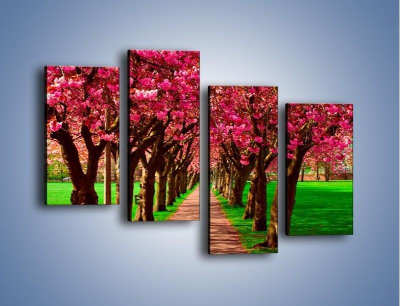 Obraz na płótnie – Aleja kwitnącej wiśni – czteroczęściowy KN1238AW2