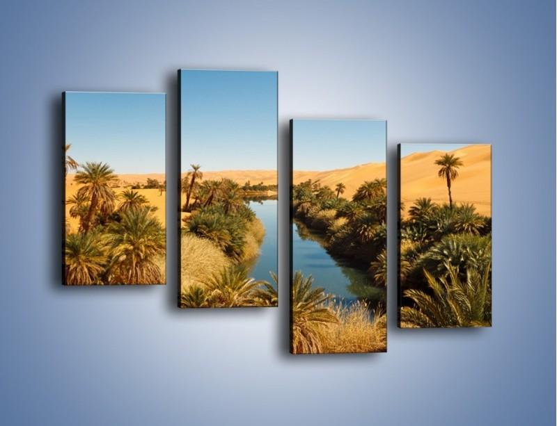 Obraz na płótnie – Woda woda na pustyni – czteroczęściowy KN1294AW2