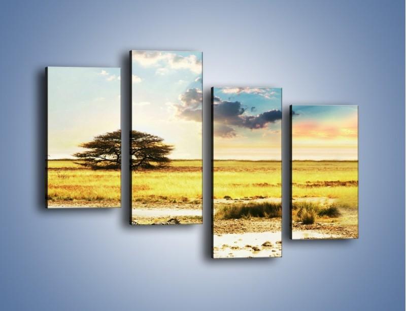 Obraz na płótnie – Zebry na sawannie – czteroczęściowy KN1298AW2