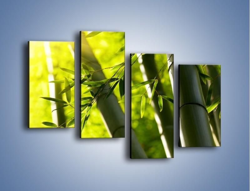Obraz na płótnie – Twarde łodygi bambusa – czteroczęściowy KN1314AW2