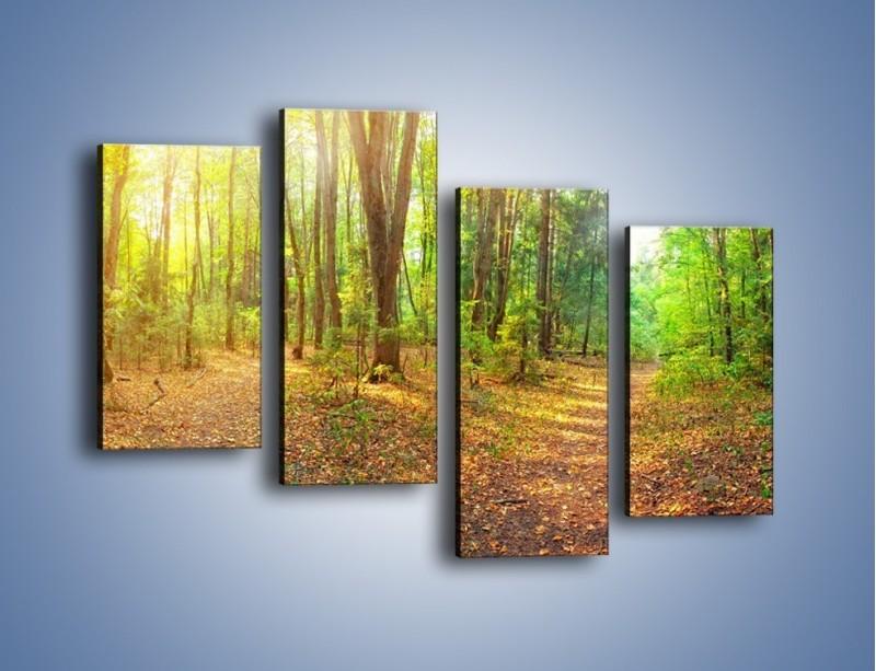 Obraz na płótnie – Przejrzysty piękny las – czteroczęściowy KN1344AW2