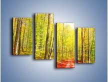 Obraz na płótnie – Brzózki liście i las – czteroczęściowy KN1345AW2