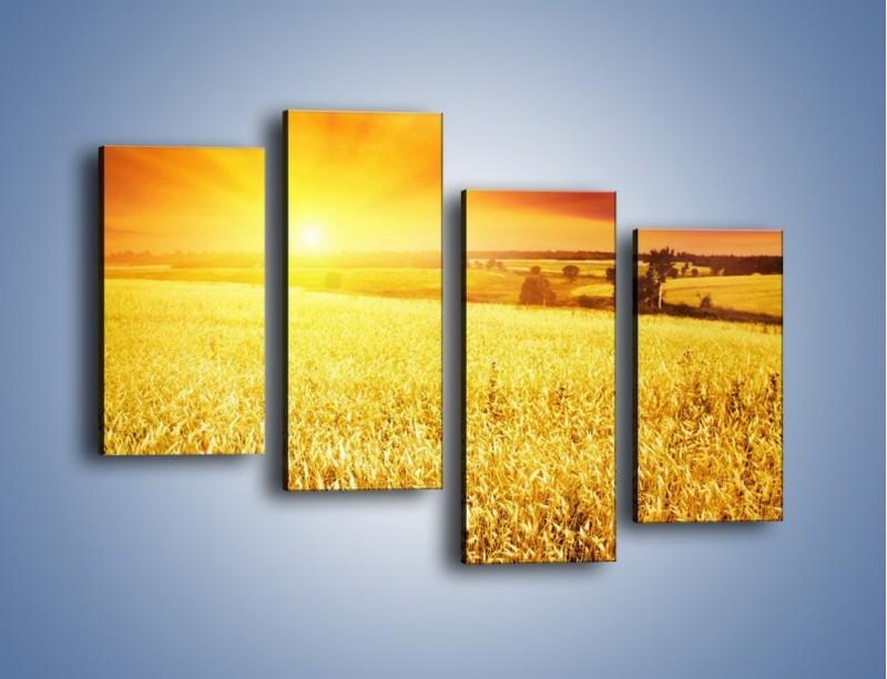 Obraz na płótnie – Zboże złote jak słońce – czteroczęściowy KN398W2