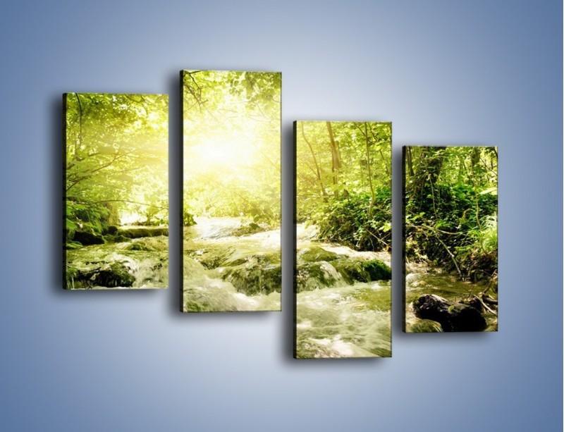 Obraz na płótnie – Wzburzony potok leśny – czteroczęściowy KN508W2
