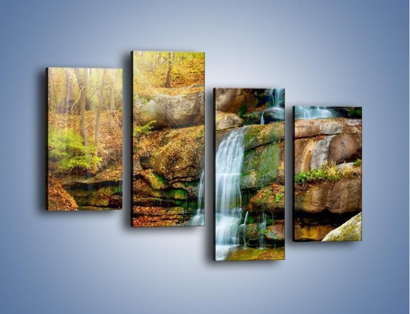 Obraz na płótnie – Leśne podłoże późną jesienią – czteroczęściowy KN563W2
