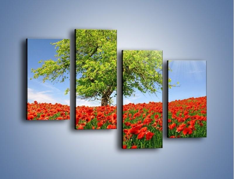 Obraz na płótnie – Cała łąka maków – czteroczęściowy KN623W2