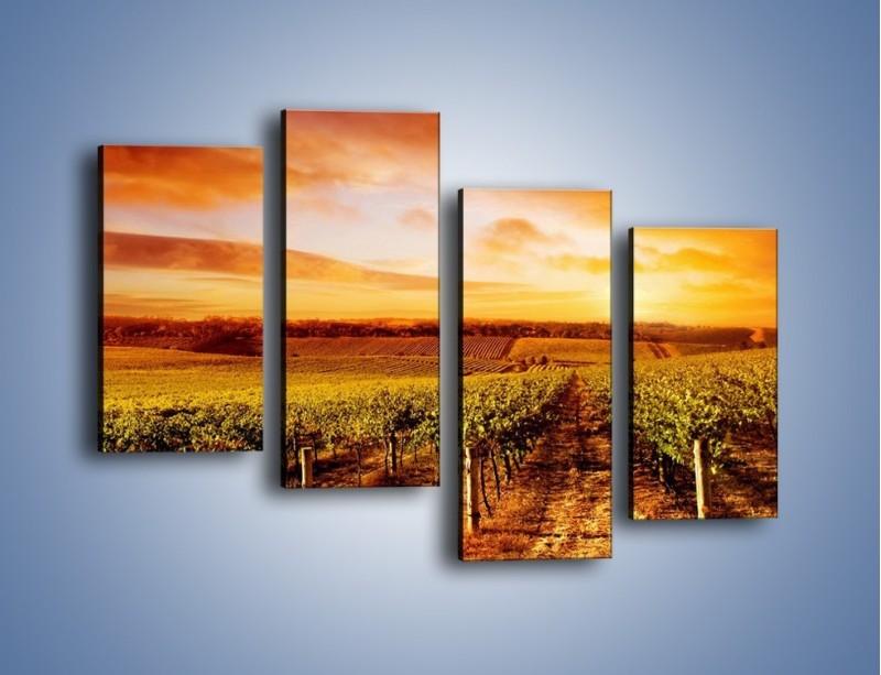 Obraz na płótnie – Ziemia i uprawy – czteroczęściowy KN673W2