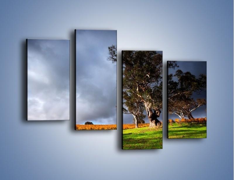 Obraz na płótnie – Burzowe chmury nad polaną – czteroczęściowy KN748W2