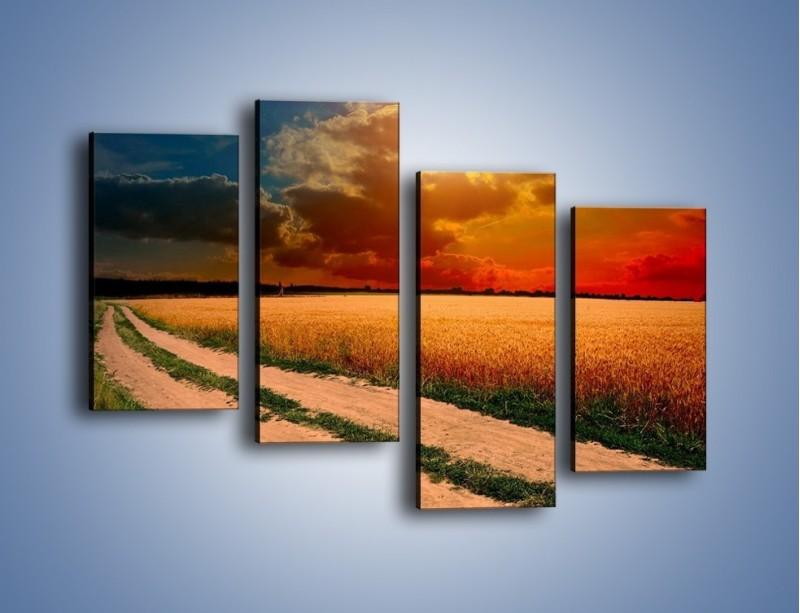 Obraz na płótnie – Zbożowa polana i jej cały urok – czteroczęściowy KN776W2
