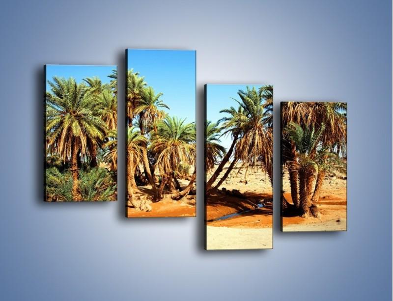 Obraz na płótnie – Palmowa rodzina w komplecie – czteroczęściowy KN809W2