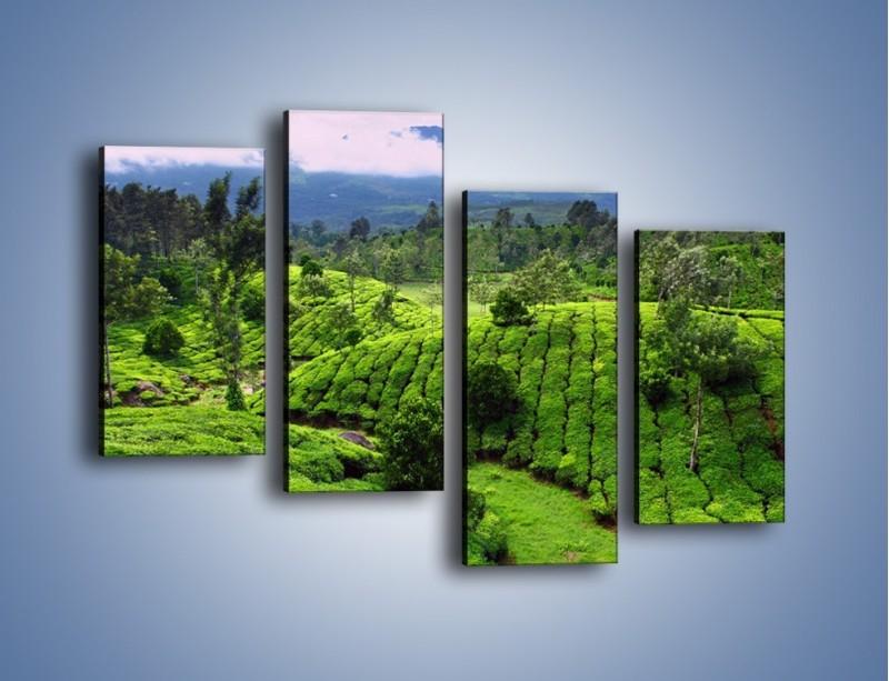 Obraz na płótnie – Rozległa zielona kraina – czteroczęściowy KN872W2