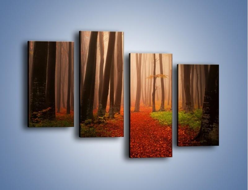 Obraz na płótnie – Las pełen tajemnic – czteroczęściowy KN909W2