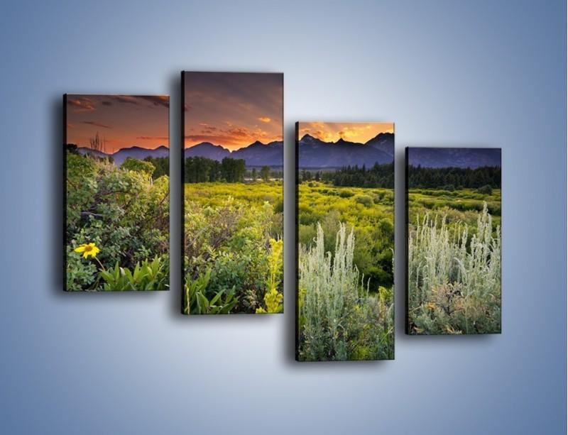 Obraz na płótnie – Wieczorny spokój na polanie – czteroczęściowy KN987W2