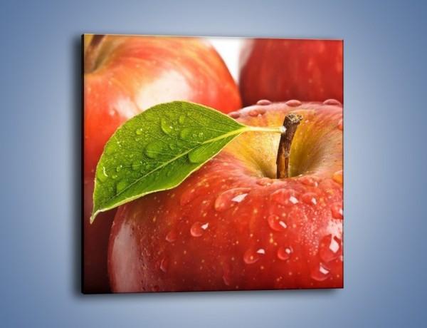 Obraz na płótnie – Jabłka prosto z drzewa – jednoczęściowy kwadratowy JN302