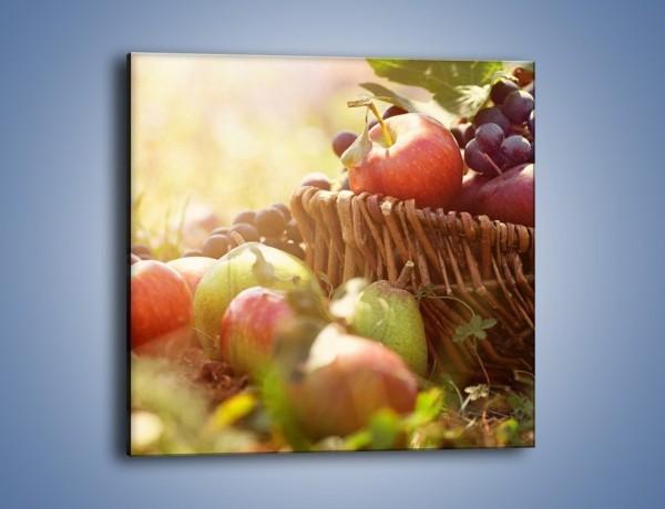 Obraz na płótnie – Ogród pełen owocowego zdrowia – jednoczęściowy kwadratowy JN303