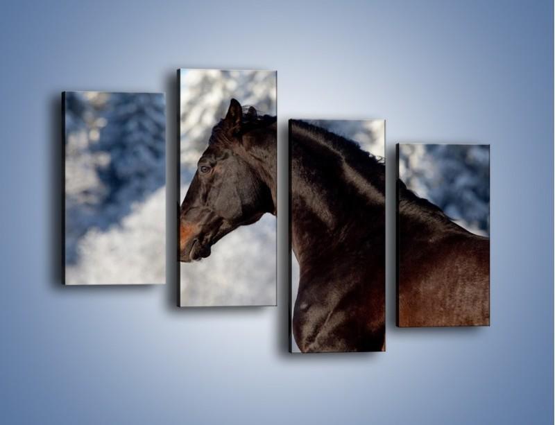 Obraz na płótnie – Brązowy ogier na zimowym spacerze – czteroczęściowy Z056W2