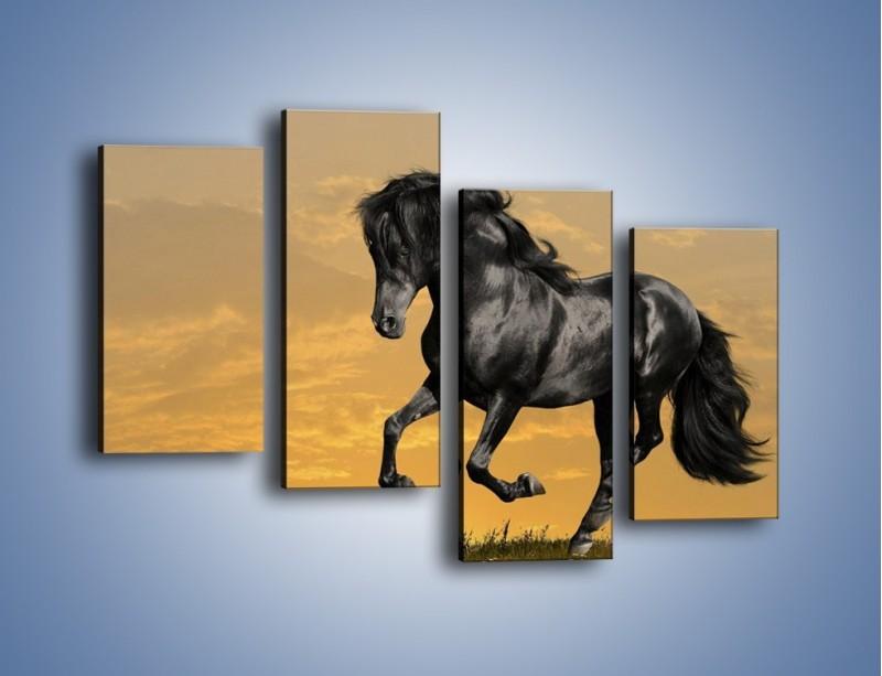 Obraz na płótnie – Bieg z koniem po polanie – czteroczęściowy Z057W2