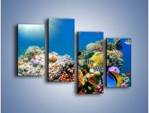 Obraz na płótnie – Fauna i kolorowi towarzysze – czteroczęściowy Z116W2