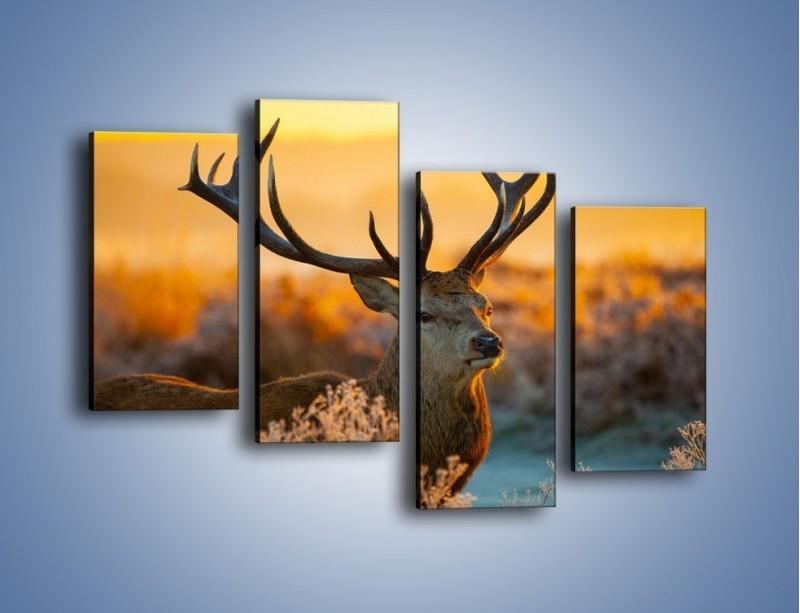Obraz na płótnie – Ciężkie poroże jelenia – czteroczęściowy Z165W2
