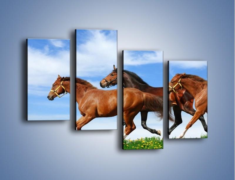 Obraz na płótnie – Galopujące stado brązowych koni – czteroczęściowy Z172W2