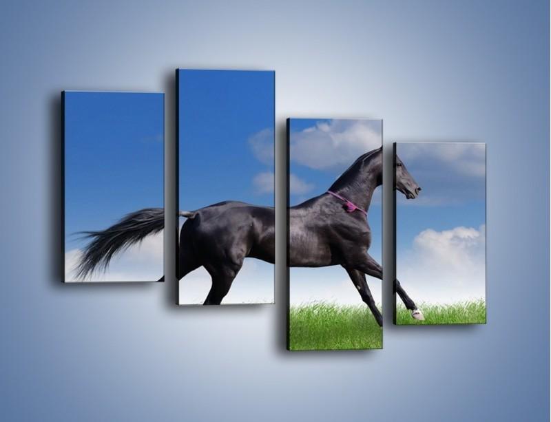 Obraz na płótnie – Dziki koń w biegu – czteroczęściowy Z194W2
