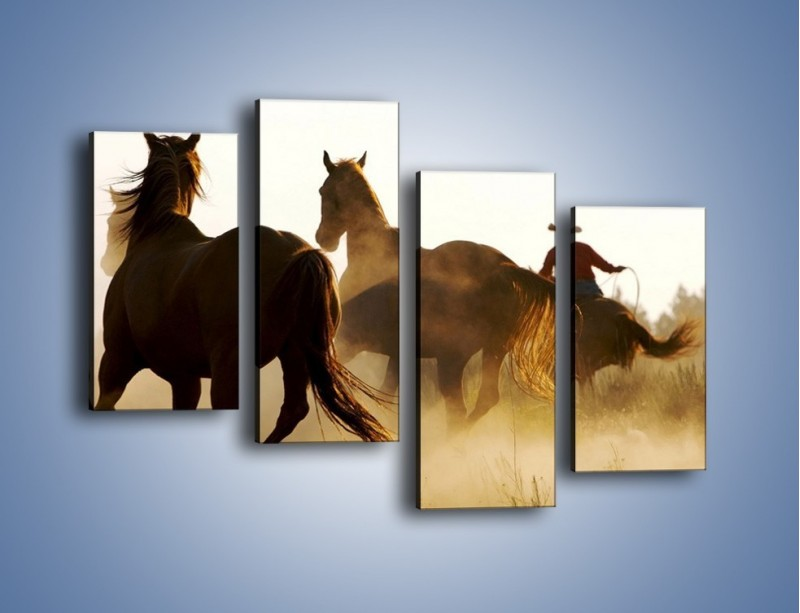 Obraz na płótnie – Cowboy wśród koni – czteroczęściowy Z206W2