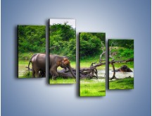 Obraz na płótnie – Kąpiel ze słoniem – czteroczęściowy Z216W2