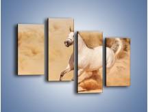 Obraz na płótnie – Klacz w tumanach piasku – czteroczęściowy Z233W2