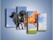 Obraz na płótnie – Czarny rudy i koń – czteroczęściowy Z241W2
